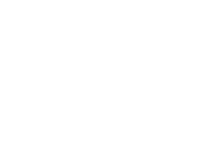 Foundation for Sustainable Families logo